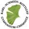 K.-Schmidt-Rottluff-Gymnasium